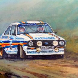 Ari Vatanen Approved for print 09