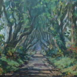 dark hedges approved for print 03.00