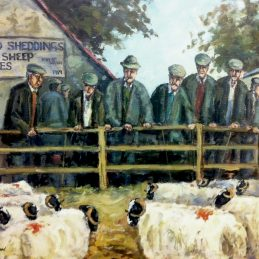 Braid Sheddings sheep sales approved for print 28.04