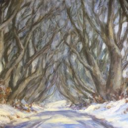 Dark Hedges Snow approved for print 03.06.16 USE THIS IMAGE FOR PRINT
