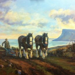 Ploughing at Ballycastle