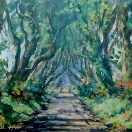 dark hedges approved for print 03
