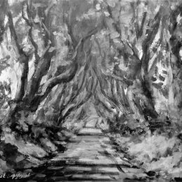 dark hedges Black and white approved for print 040 (use this image to print